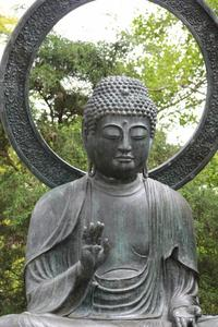 THE BUDDHA IN GOLDEN GATE PARK SAN FRANCISCO